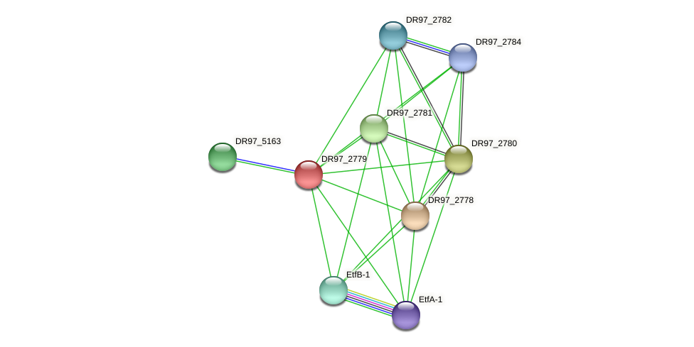 DR97_2779 protein (Pseudomonas aeruginosa) - STRING interaction network
