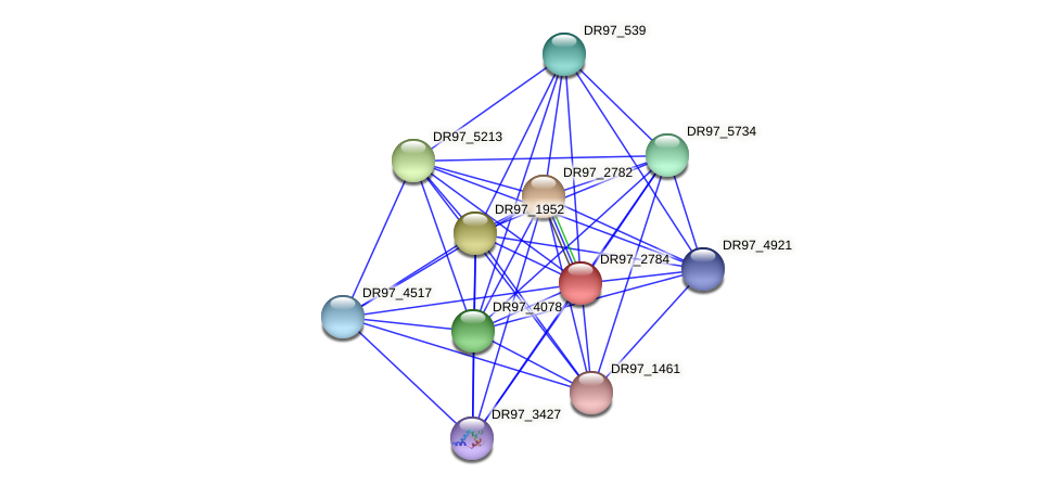 DR97_2784 protein (Pseudomonas aeruginosa) - STRING interaction network