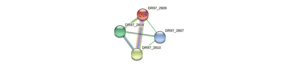 DR97_2809 protein (Pseudomonas aeruginosa) - STRING interaction network