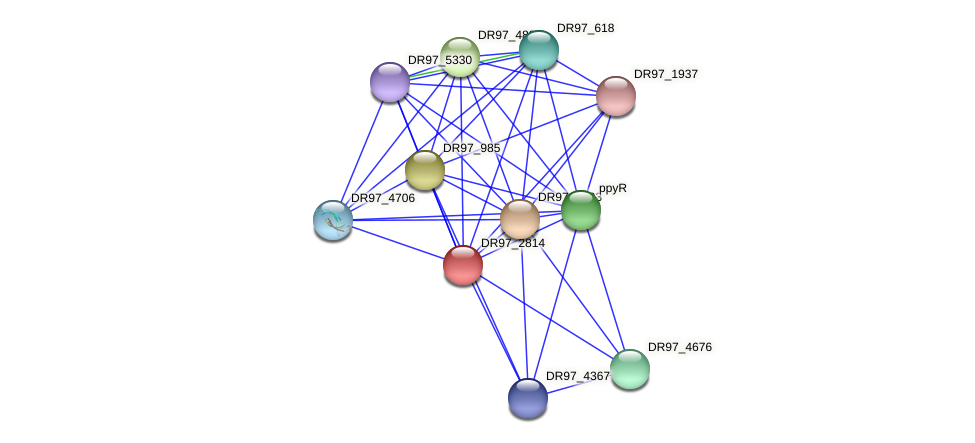 DR97_2814 protein (Pseudomonas aeruginosa) - STRING interaction network