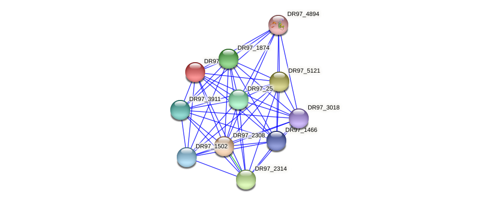 DR97_2825 protein (Pseudomonas aeruginosa) - STRING interaction network
