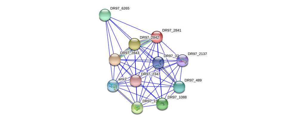 DR97_2841 protein (Pseudomonas aeruginosa) - STRING interaction network