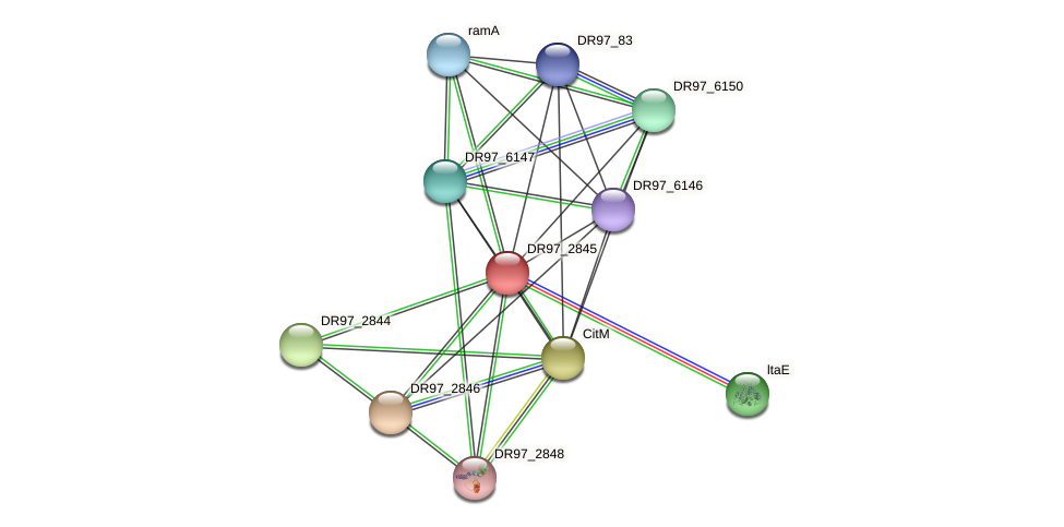 DR97_2845 protein (Pseudomonas aeruginosa) - STRING interaction network