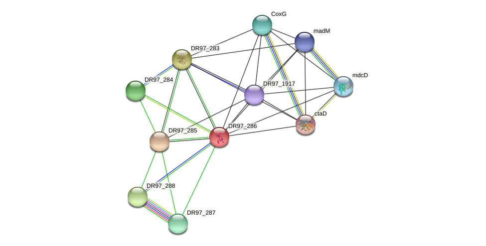 DR97_286 protein (Pseudomonas aeruginosa) - STRING interaction network