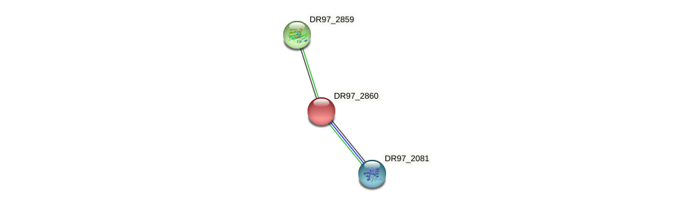 DR97_2860 protein (Pseudomonas aeruginosa) - STRING interaction network
