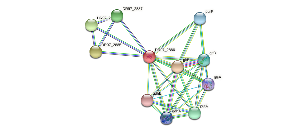 DR97_2886 protein (Pseudomonas aeruginosa) - STRING interaction network