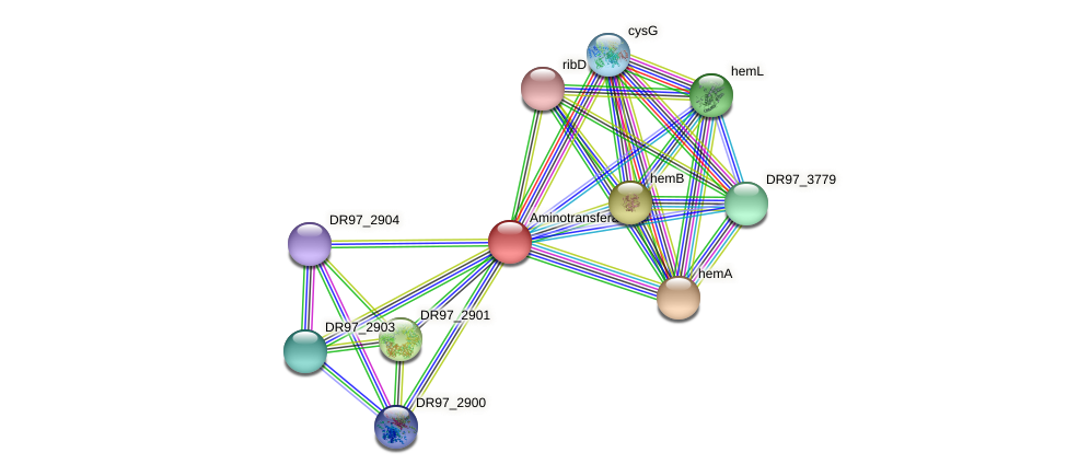 DR97_2902 protein (Pseudomonas aeruginosa) - STRING interaction network
