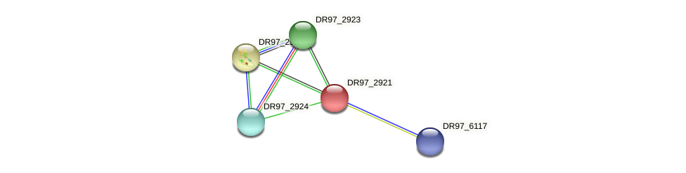 DR97_2921 protein (Pseudomonas aeruginosa) - STRING interaction network