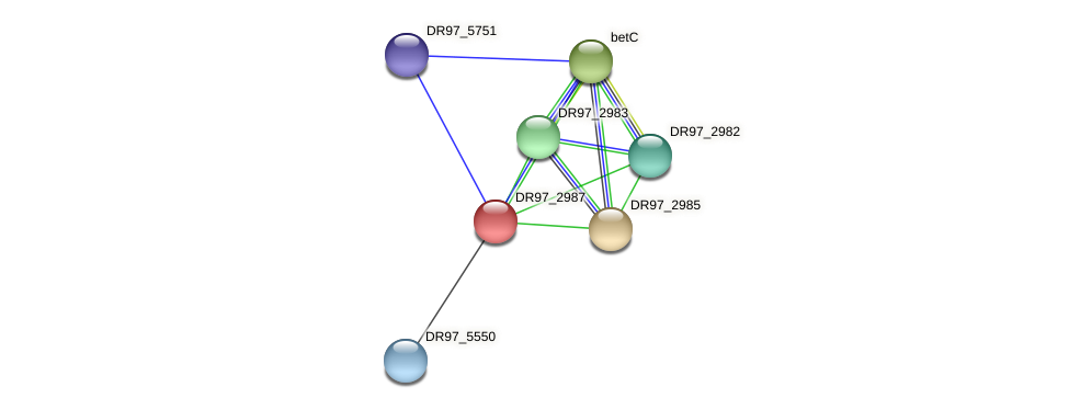 DR97_2987 protein (Pseudomonas aeruginosa) - STRING interaction network