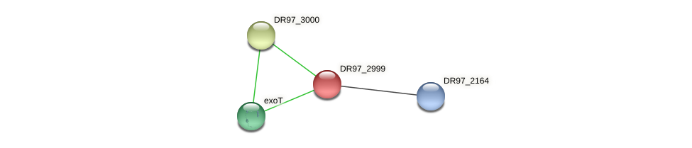 DR97_2999 protein (Pseudomonas aeruginosa) - STRING interaction network
