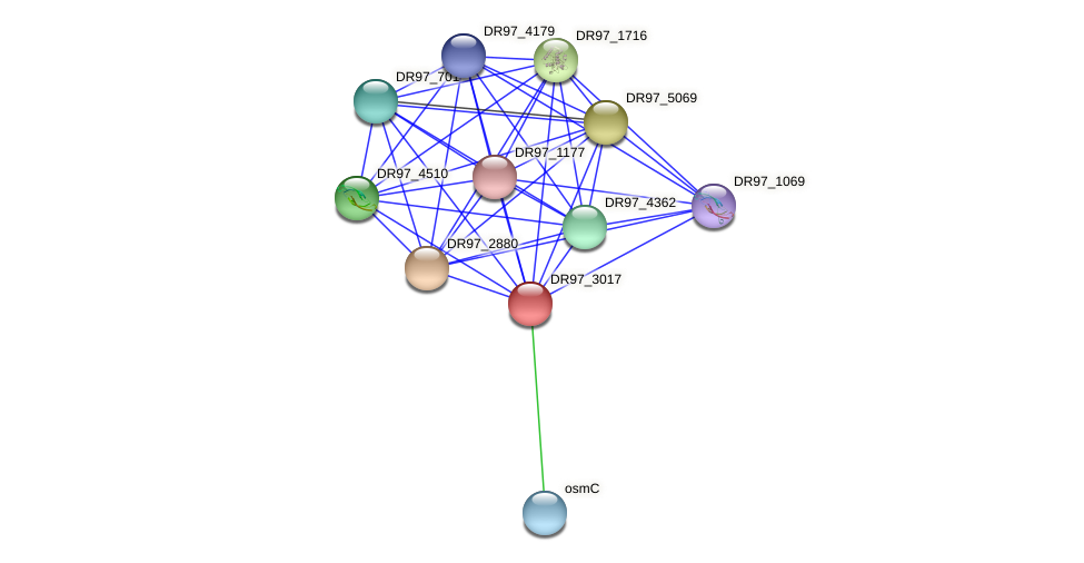 DR97_3017 protein (Pseudomonas aeruginosa) - STRING interaction network