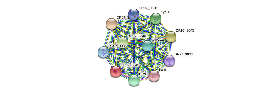 DR97_3043 protein (Pseudomonas aeruginosa) - STRING interaction network