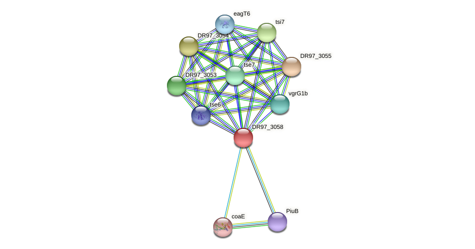 DR97_3058 protein (Pseudomonas aeruginosa) - STRING interaction network