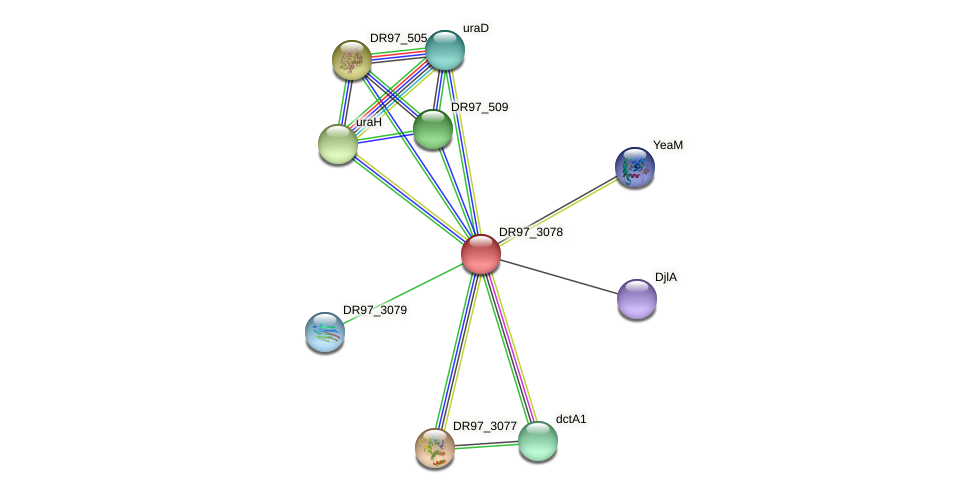 DR97_3078 protein (Pseudomonas aeruginosa) - STRING interaction network