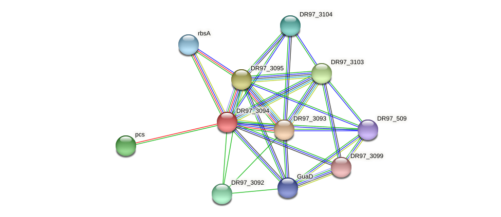 DR97_3094 protein (Pseudomonas aeruginosa) - STRING interaction network