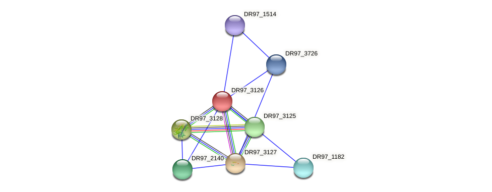 DR97_3126 protein (Pseudomonas aeruginosa) - STRING interaction network