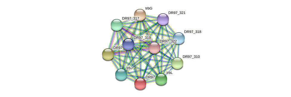 DR97_313 protein (Pseudomonas aeruginosa) - STRING interaction network