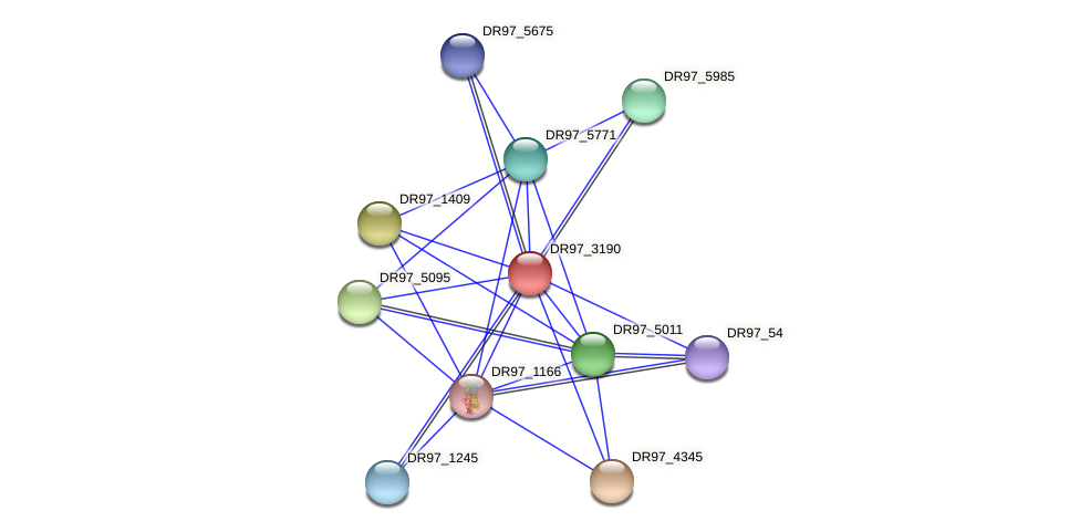 DR97_3190 protein (Pseudomonas aeruginosa) - STRING interaction network