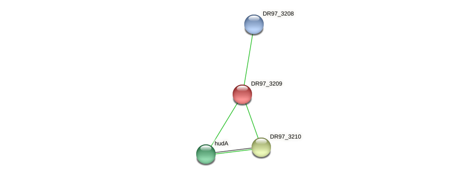 DR97_3209 protein (Pseudomonas aeruginosa) - STRING interaction network