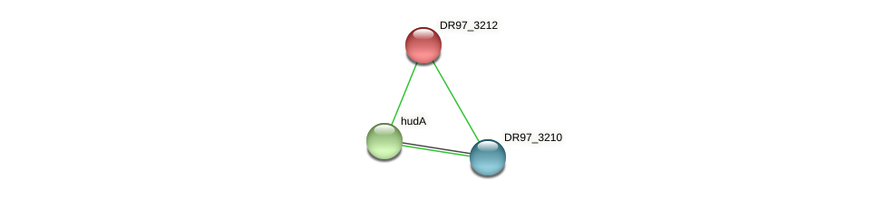 DR97_3212 protein (Pseudomonas aeruginosa) - STRING interaction network