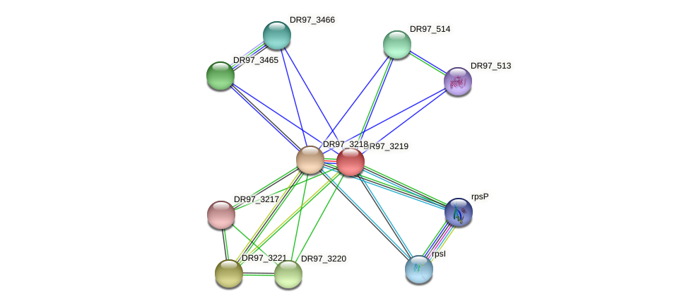 DR97_3219 protein (Pseudomonas aeruginosa) - STRING interaction network