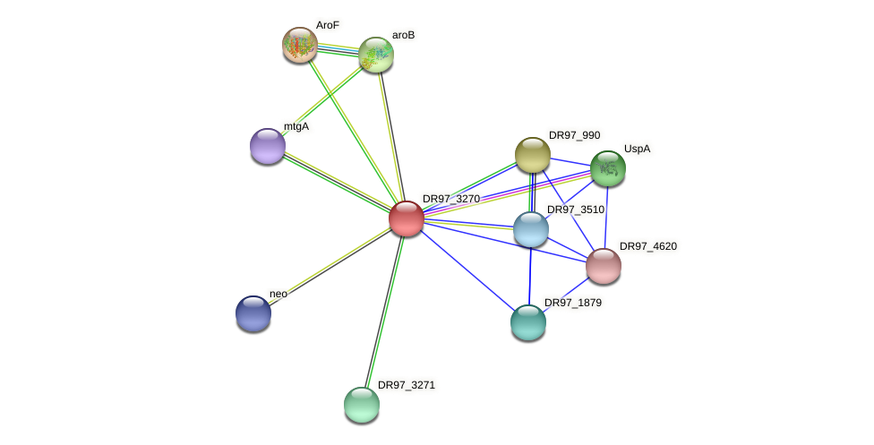 DR97_3270 protein (Pseudomonas aeruginosa) - STRING interaction network