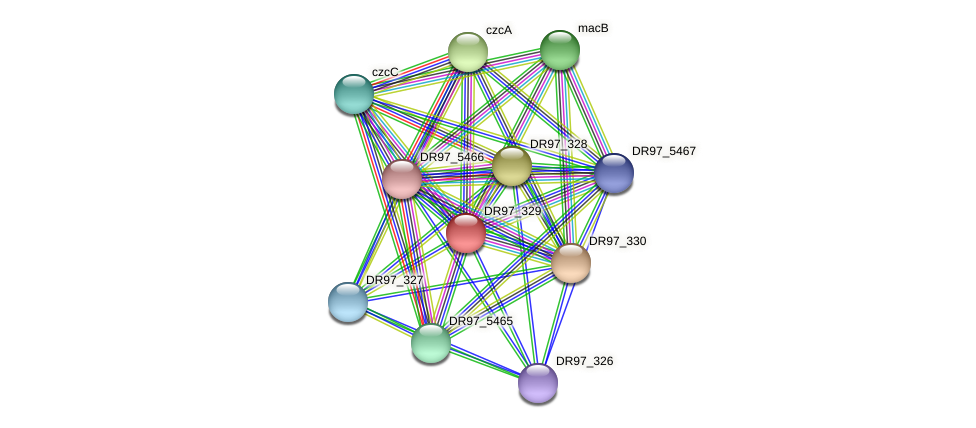 DR97_329 protein (Pseudomonas aeruginosa) - STRING interaction network