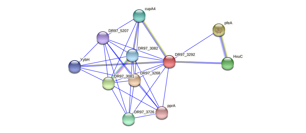 DR97_3292 protein (Pseudomonas aeruginosa) - STRING interaction network
