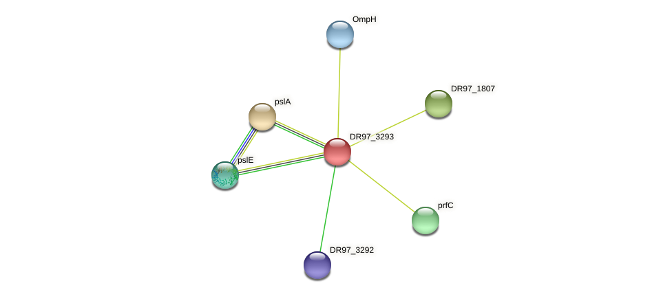 cat_2 protein (Pseudomonas aeruginosa) - STRING interaction network