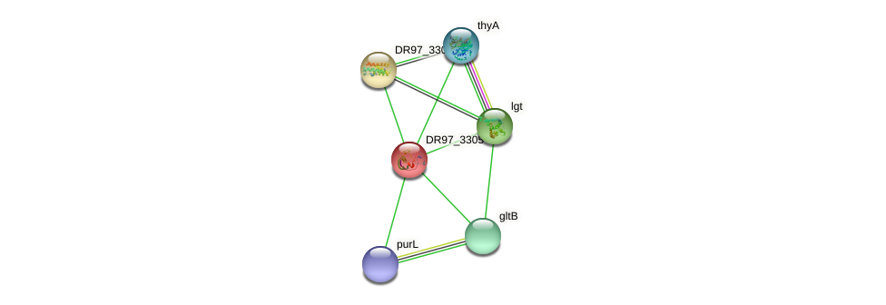 DR97_3305 protein (Pseudomonas aeruginosa) - STRING interaction network