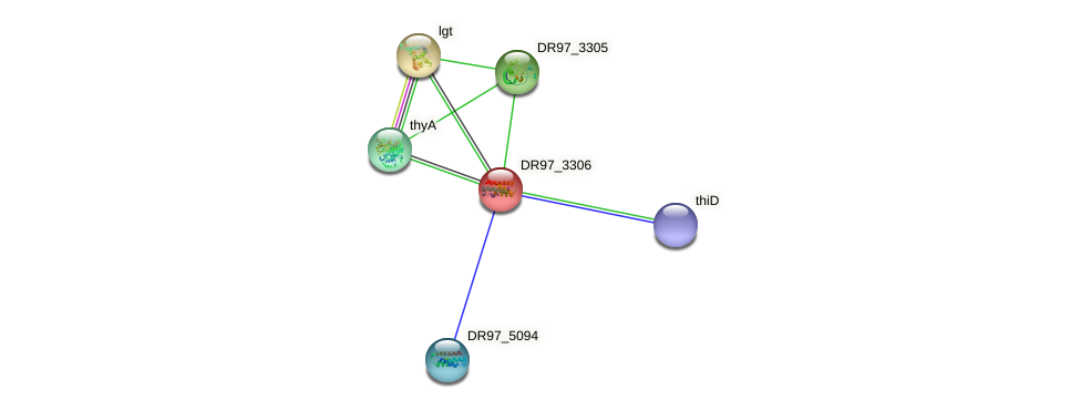 DR97_3306 protein (Pseudomonas aeruginosa) - STRING interaction network