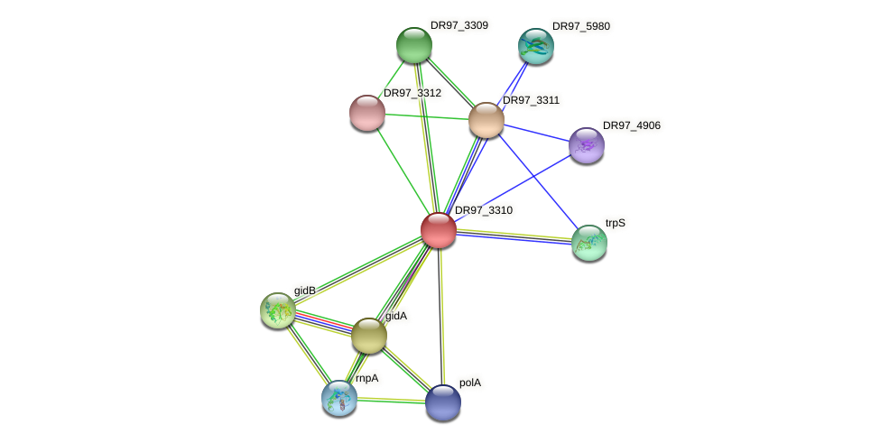 DR97_3310 protein (Pseudomonas aeruginosa) - STRING interaction network