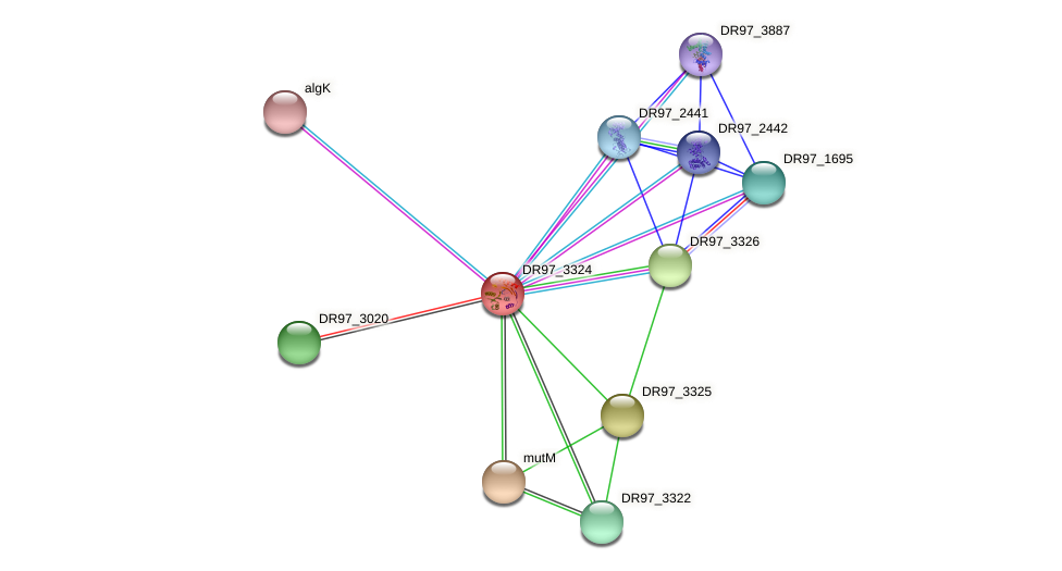 DR97_3324 protein (Pseudomonas aeruginosa) - STRING interaction network