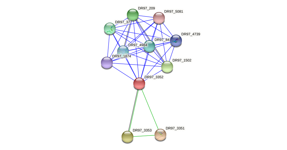 DR97_3352 protein (Pseudomonas aeruginosa) - STRING interaction network