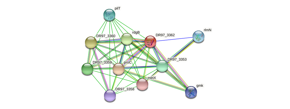 DR97_3362 protein (Pseudomonas aeruginosa) - STRING interaction network