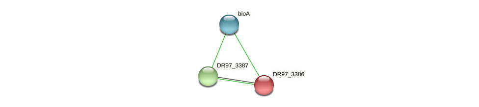 DR97_3386 protein (Pseudomonas aeruginosa) - STRING interaction network