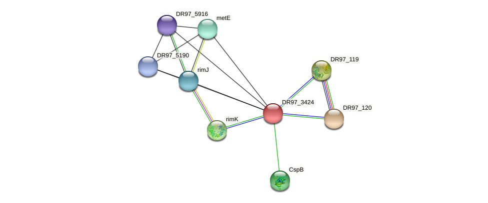 DR97_3424 protein (Pseudomonas aeruginosa) - STRING interaction network