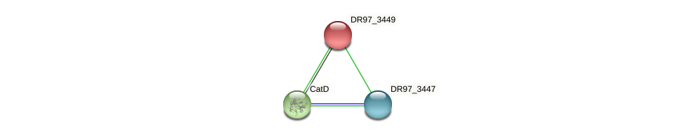 DR97_3449 protein (Pseudomonas aeruginosa) - STRING interaction network