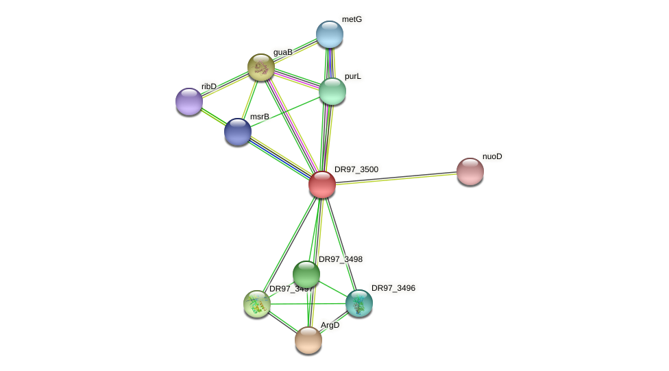 DR97_3500 protein (Pseudomonas aeruginosa) - STRING interaction network