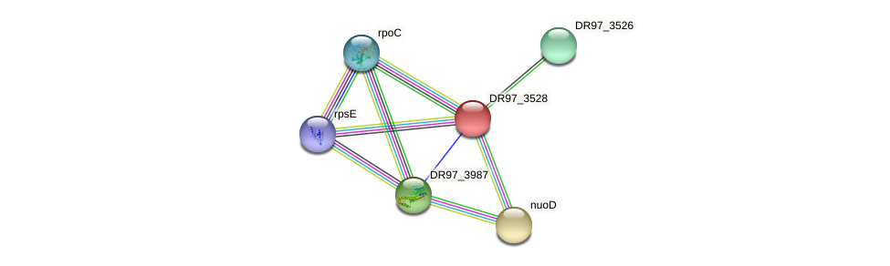DR97_3528 protein (Pseudomonas aeruginosa) - STRING interaction network