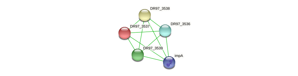 DR97_3537 protein (Pseudomonas aeruginosa) - STRING interaction network