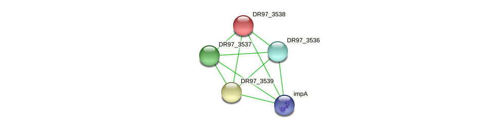 DR97_3538 protein (Pseudomonas aeruginosa) - STRING interaction network