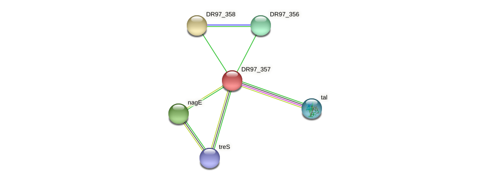 DR97_357 protein (Pseudomonas aeruginosa) - STRING interaction network