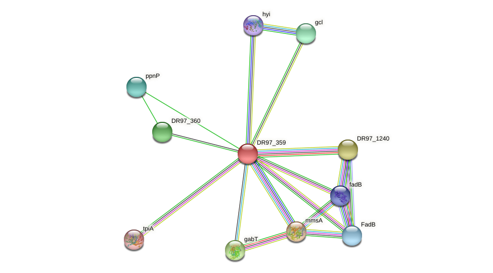 DR97_359 protein (Pseudomonas aeruginosa) - STRING interaction network