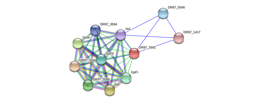 DR97_3591 protein (Pseudomonas aeruginosa) - STRING interaction network