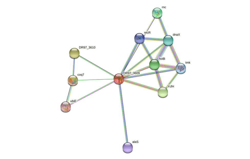 DR97_3609 protein (Pseudomonas aeruginosa) - STRING interaction network