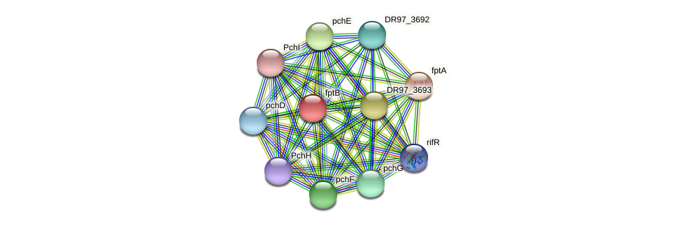 fptB protein (Pseudomonas aeruginosa) - STRING interaction network