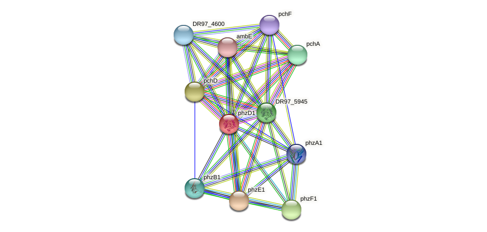 DR97_3698 protein (Pseudomonas aeruginosa) - STRING interaction network