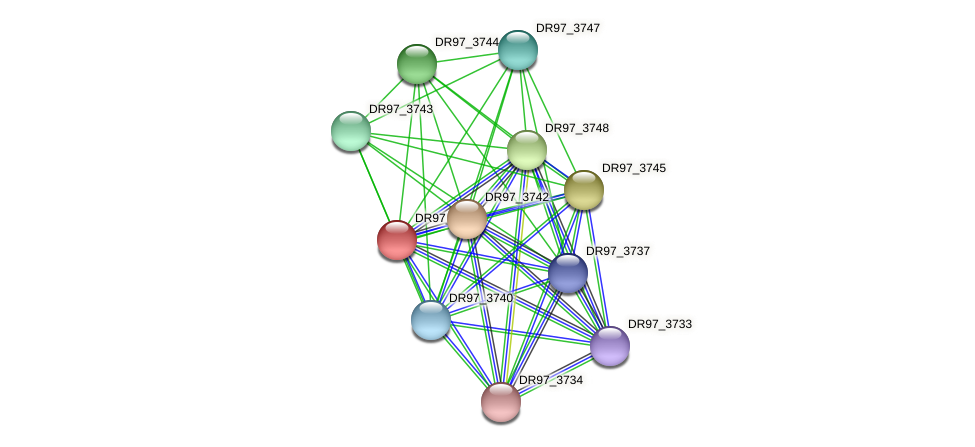 DR97_3746 protein (Pseudomonas aeruginosa) - STRING interaction network