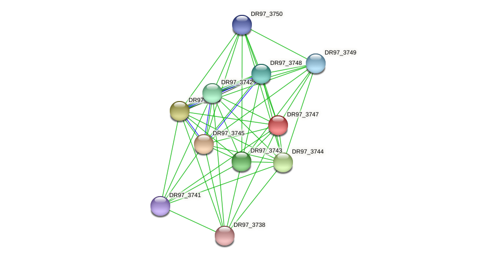 DR97_3747 protein (Pseudomonas aeruginosa) - STRING interaction network